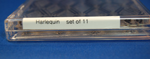 clear-box-with-spine-label.jpg