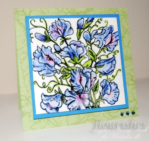 sweet-pea-card-square1